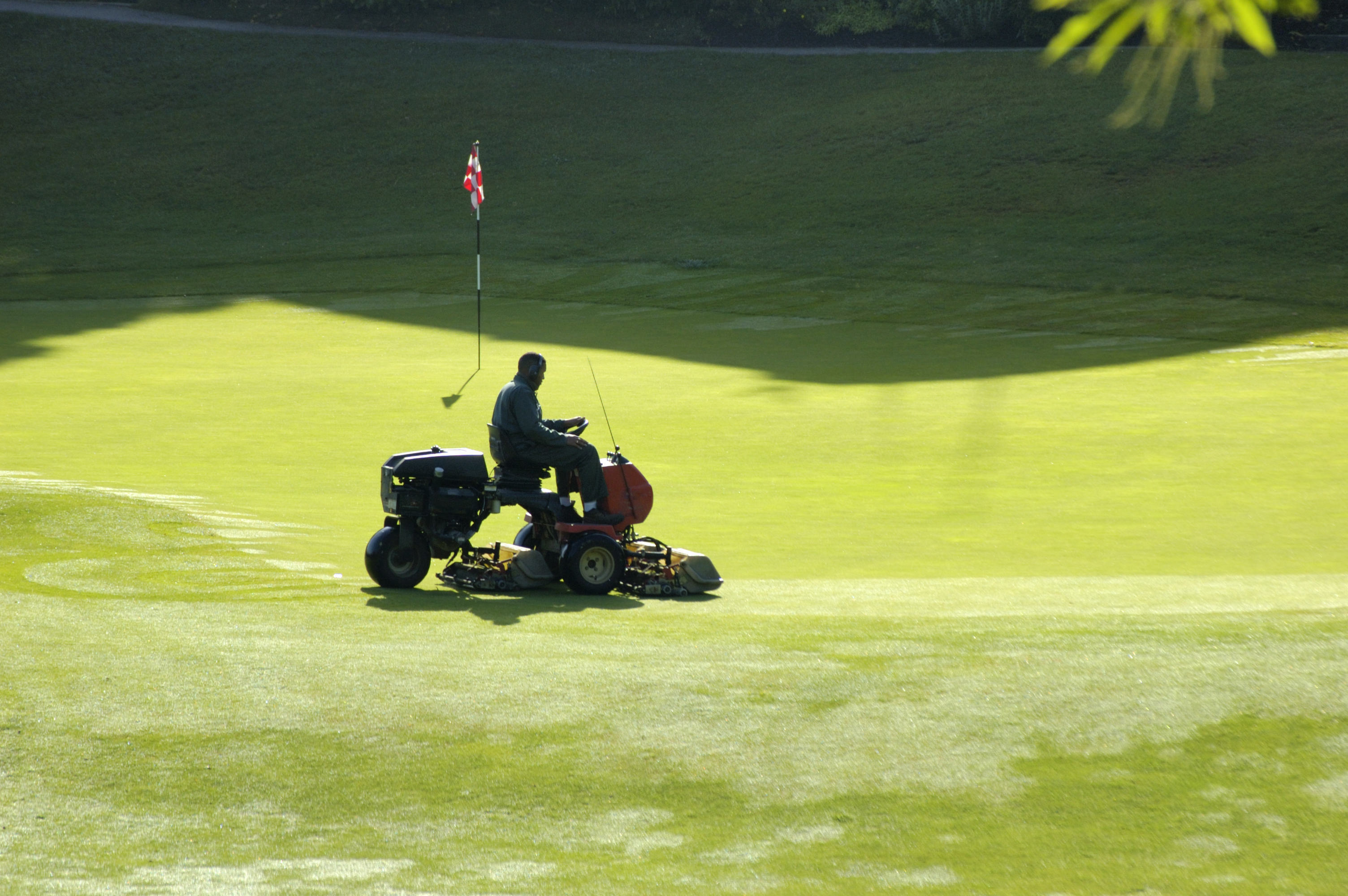 golf course mowing