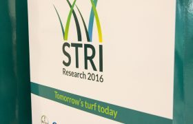 STRI Research 2016 round-up
