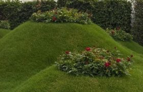 Rolawn erupts at RHS Hampton Court Palace Flower Show