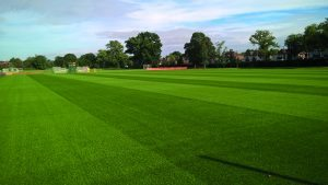 fulham-motspur-park-training-pitch